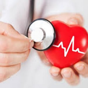 Serce i Krążenie